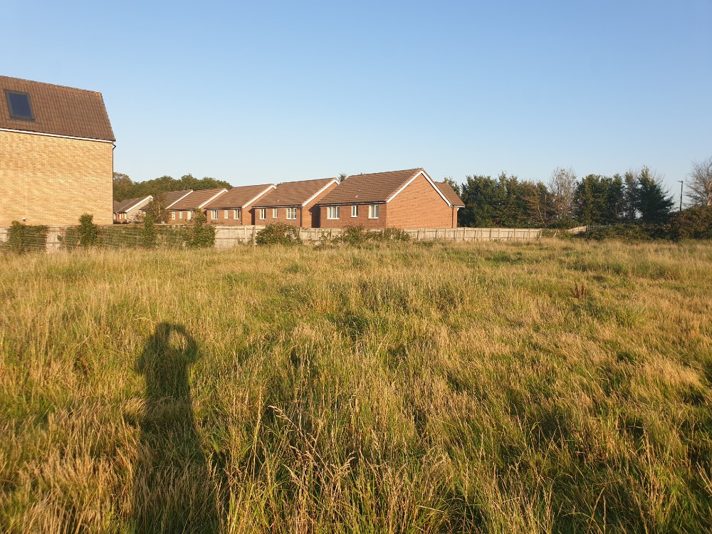 new homes green space